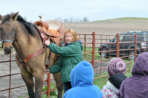 How to saddle and put tack on a horse was a class held by Denise Herrman, vice president of the saddle club.